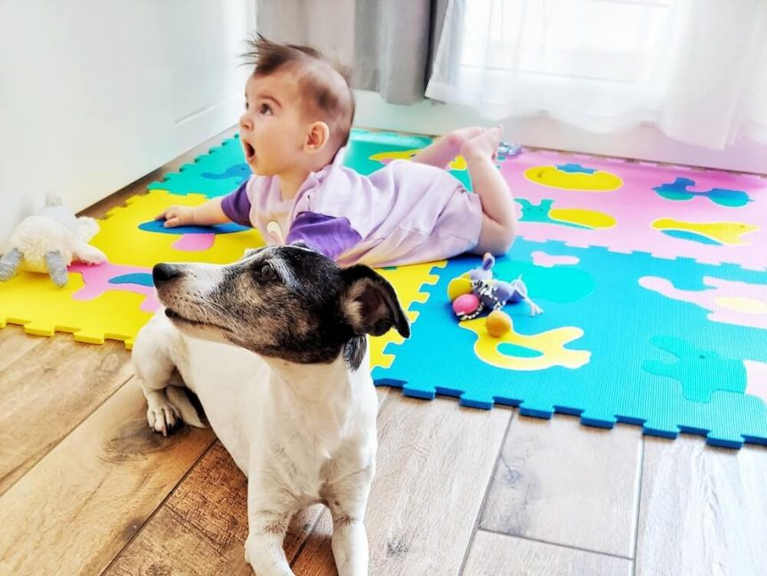 dog lays on the floor next to a baby in a pink onesie.
